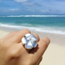 Unique jewellery designs made in Mauritius