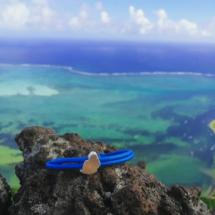 Mauritius souvenirs