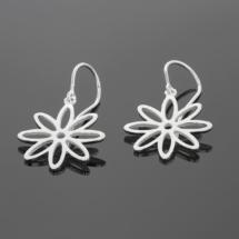 Fun silver earrings Mauritius