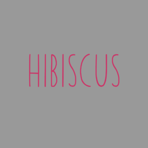 Mauritius hibiscus jewellery collection
