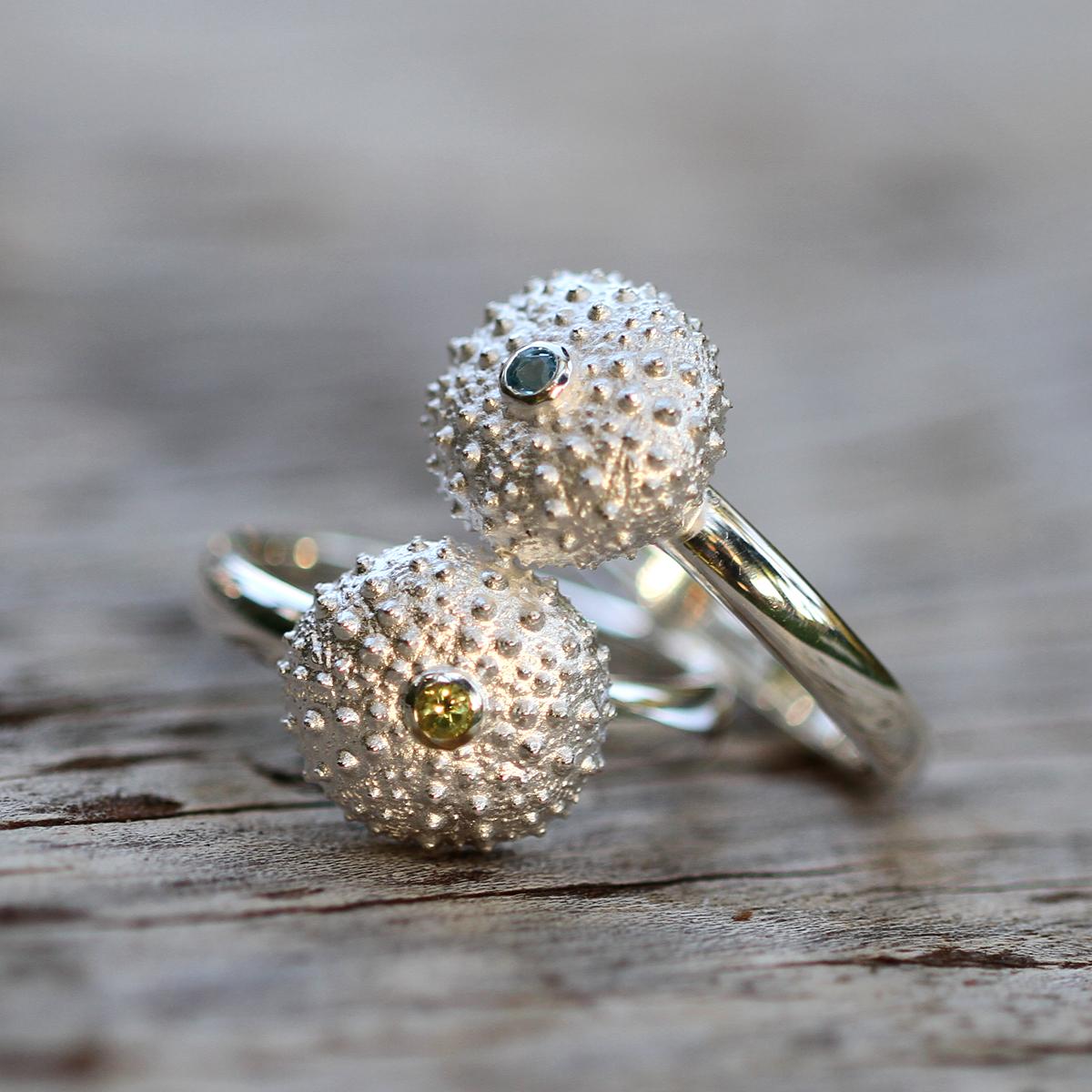 Sea urchin minis